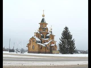 Главную площадь Первомайска украсили ворованной елью - владелица обвиняет чиновников в воровстве
