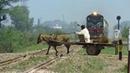 Super Fast GEU-40 4500HP collection | All 28Dn Shalimar Express | Pakistan Railways Donkey Hit train